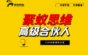 聚蚁思维高级合伙人vip会员课程合集【2020-2021】