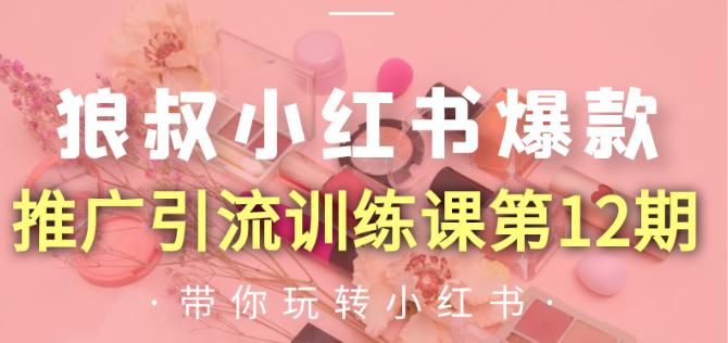 狼叔小红书爆款推广引流训练课第12期【无水印】